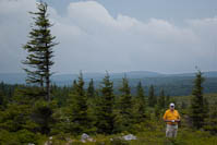 my dad on top of Dolly Sods