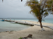 scenes from Goff's Caye