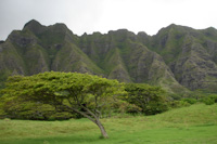another look at the pali